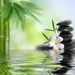L'énergie symbolisée ici par l'eau, le galet, le nénuphar, la couleur verte du chakra du coeur, donne cette ambiance de paix. On entend le silence.